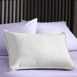Extra Firm 3-inch Gusset Natural Pillows (Set of 2) - Thumbnail 1