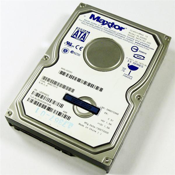 Maxtor 6L300S0 DiamondMax 300GB Hard Drive