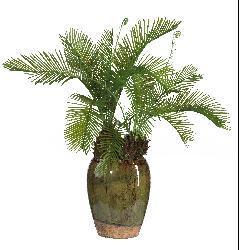 Cycas Silk Plant with Glazed Vase - Thumbnail 1