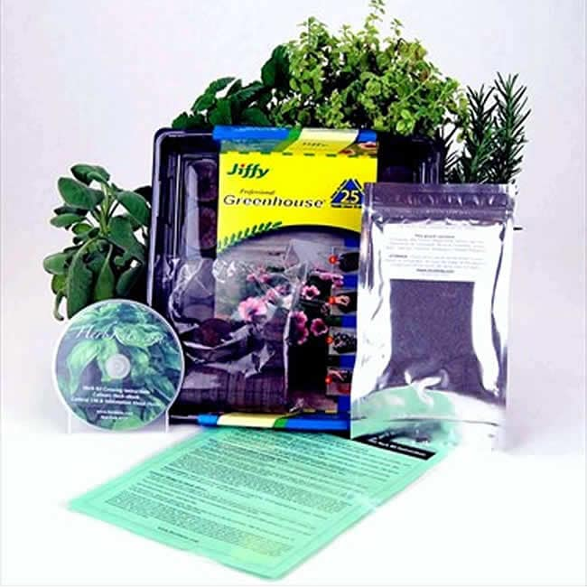 Living Whole Foods Compact Indoor Medicinal Herb Garden Starter Kit