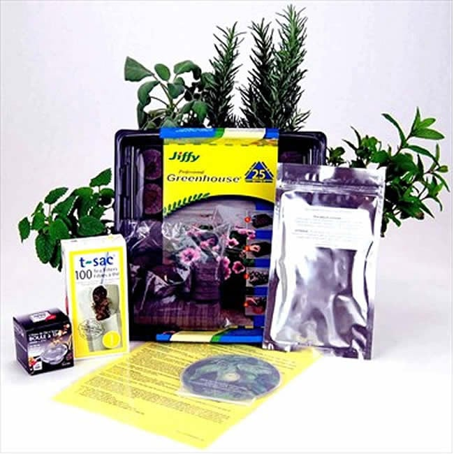 Indoor Herbal Tea Herb Garden Starter Kit with Comprehensive Instructions