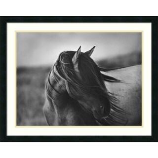 Tony Stromberg 'Fierce Grace' Framed Art Print