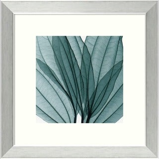 Framed Art Print 'Leaf Bouquet' by Steven N. Meyers 14 x 14-inch