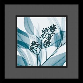 Framed Art Print 'Eucalyptus I' by Steven N. Meyers 14 x 14-inch