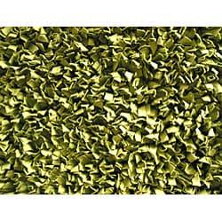 Soft Cotton Sage Shag Rug (4'7 x 7')