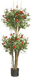 Mini-rose Silk Tree - Thumbnail 2