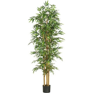 Link to Bamboo Silk Tree Similar Items in Decorative Accessories
