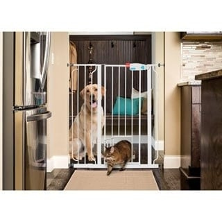 Carlson Extra Tall Walk Through Pet Gate Free Shipping