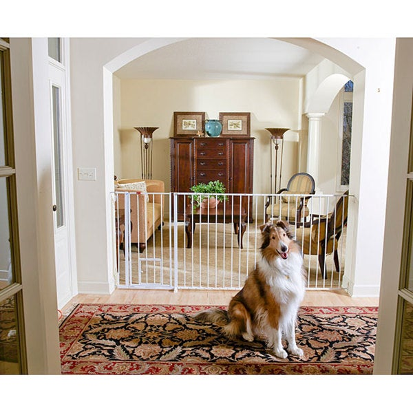 Carlson Super Wide Extra Tall Maxi Pet Gate Free Shipping Today