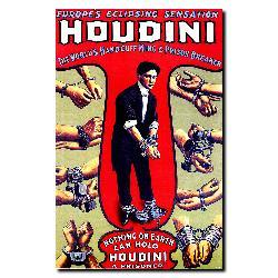 'Houdini' Gallery-wrapped Canvas Art