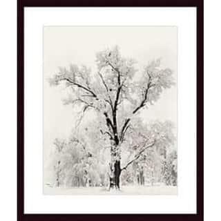 Ansel Adams 'Oak Tree' Wood Framed Art Print https://ak1.ostkcdn.com/images/products/4120911/P12127907.jpg?impolicy=medium