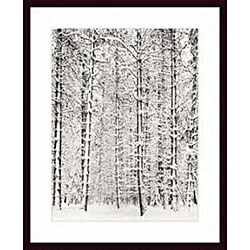 Ansel Adams 'Pine Forest in the Snow, Yosemite National Park' Art