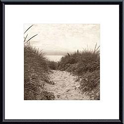 Christine Triebert 'Dune Path' Metal Framed Art Print