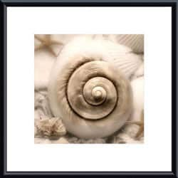 Donna Geissler 'Iridescent Seashell I' Framed Art Print