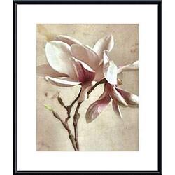 Donna Geissler 'Pink Magnolia I' Metal Framed Art Print