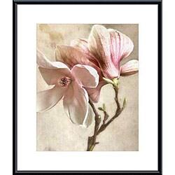 Donna Geissler 'Pink Magnolia II' Metal Framed Art Print