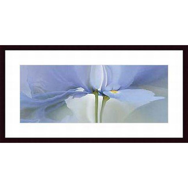 Huntington Witherill 'Iris 20' Wood Framed Art Print