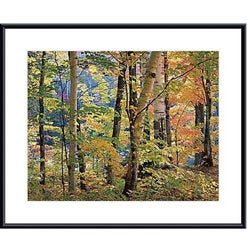 Joseph Holmes 'Maples and Birches' Metal Framed Art Print
