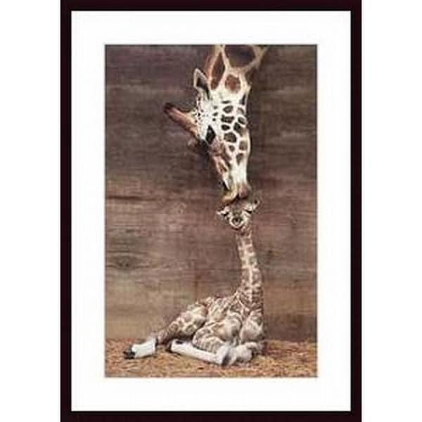 Ron D'Raine 'Makulu' Wood Framed Art Print