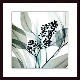 Steven N. Meyers 'Eucalyptus' Wood Framed Art Print https://ak1.ostkcdn.com/images/products/4121342/P12128354.jpg?impolicy=medium