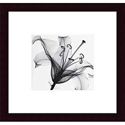 Steven N. Meyers 'Lily Muscadet' Wood Framed Art Print