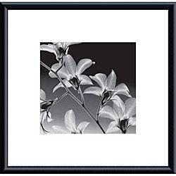 Steven N. Meyers 'Orchid Denrobium' Metal Framed Art Print