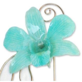 Handmade Goldplated Natural Orchid 'Baby Green' Stickpin (Thailand)