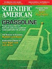 Scientific American, 12 issues for 1 year(s)