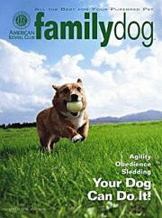 AKC Family Dog, 12 issues for 2 year(s)