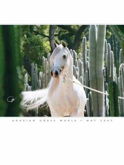 Arabian Horse World, 12 issues for 1 year(s)
