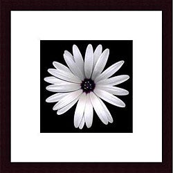 Feinstein 'Sunscape Daisy' Wood Framed Art Print