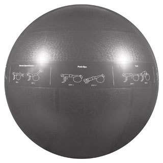 GoFit Professional Stability Ball and Core Performance Training DVD
