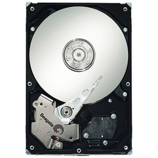 Seagate Barracuda ES.2 ST3250310NS 250 GB Internal Hard Drive