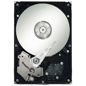 Seagate Barracuda ES.2 ST3250310NS 250 GB Internal Hard Drive