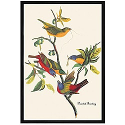 John James Audubon 'Painted Bunting' Framed Print Art