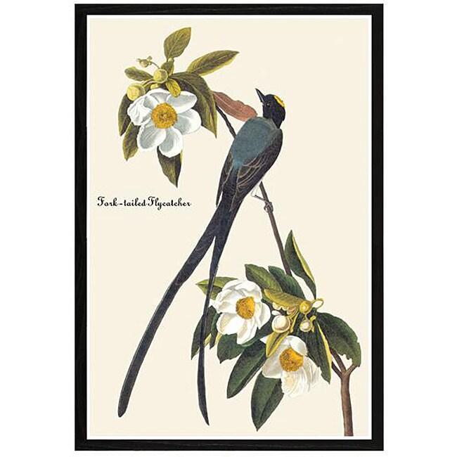 John James Audubon 'Fork Tail Fly Catcher' Framed Print Art