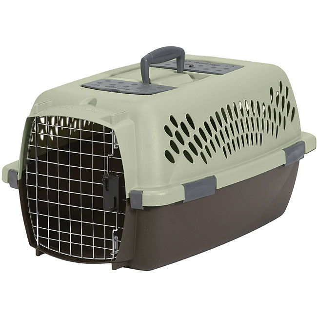 Petmate Medium Pet Porter Pet Carrier