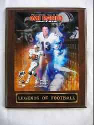 Dan Marino Legends of Football Plaque - Thumbnail 2