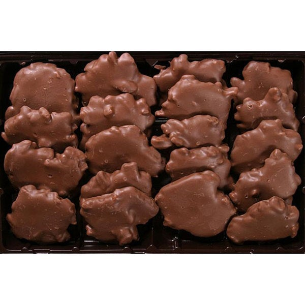 Bidwell Candies 1-pound Chocolate Turtles Gift Box