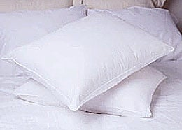 Deluxe Cotton Medium-soft Support Natural Feather Pillows (Set of 2) - Thumbnail 0