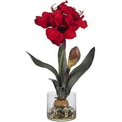 Amaryllis in Round Vase|https://ak1.ostkcdn.com/images/products/4348187/Amaryllis-in-Round-Vase-P12319876.jpg?impolicy=medium