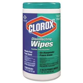 Clorox Disinfecting Wipes (Case of 6)