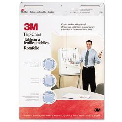 3M Professional Flip Chart (Case of 2)