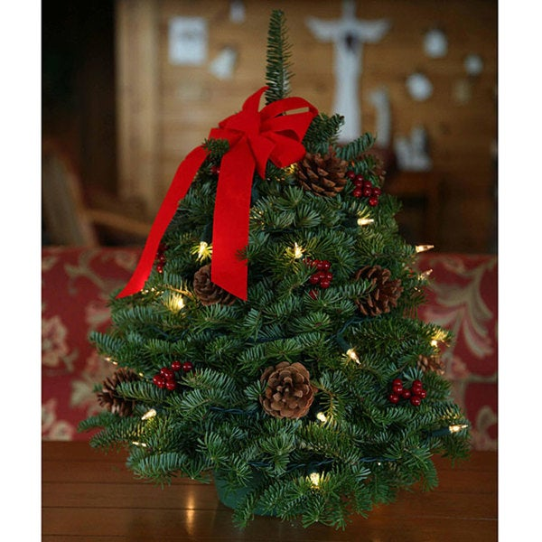 95 Amazing Outdoor Christmas Decorations: Shop Fresh-cut Maine Balsam Classic Small Round