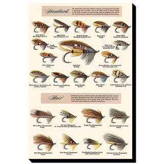 'Fly-Fishing Lures: Standard and Hair' Canvas Art