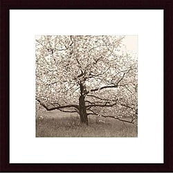 Christine Triebert 'Apple Tree in Bloom' Framed Photo Print