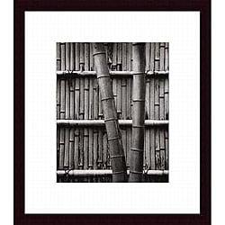 Jeff Zaruba 'Bamboo and Wall' Wood Framed Art Print
