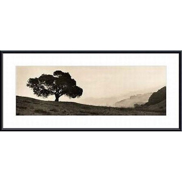 Shop Alan Blaustein \'Black Oak Tree\' Metal Framed Art Print - Free ...