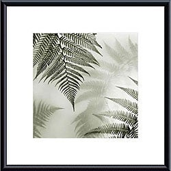 Alan Blaustein 'Ferns No. 1' Metal Framed Art Print