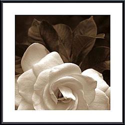 Rebecca Swanson 'Gardenia Garden' Metal Framed Art Print